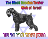 Клуб Черен Териер – Израел